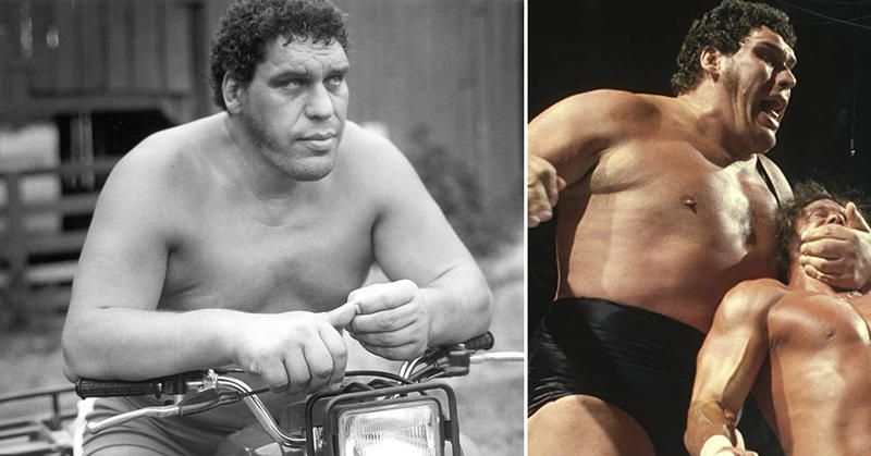 Andre The Giant Tochter